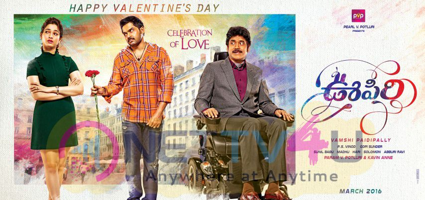 Oopiri Movie Celebration Of Love Valentines Day Poster