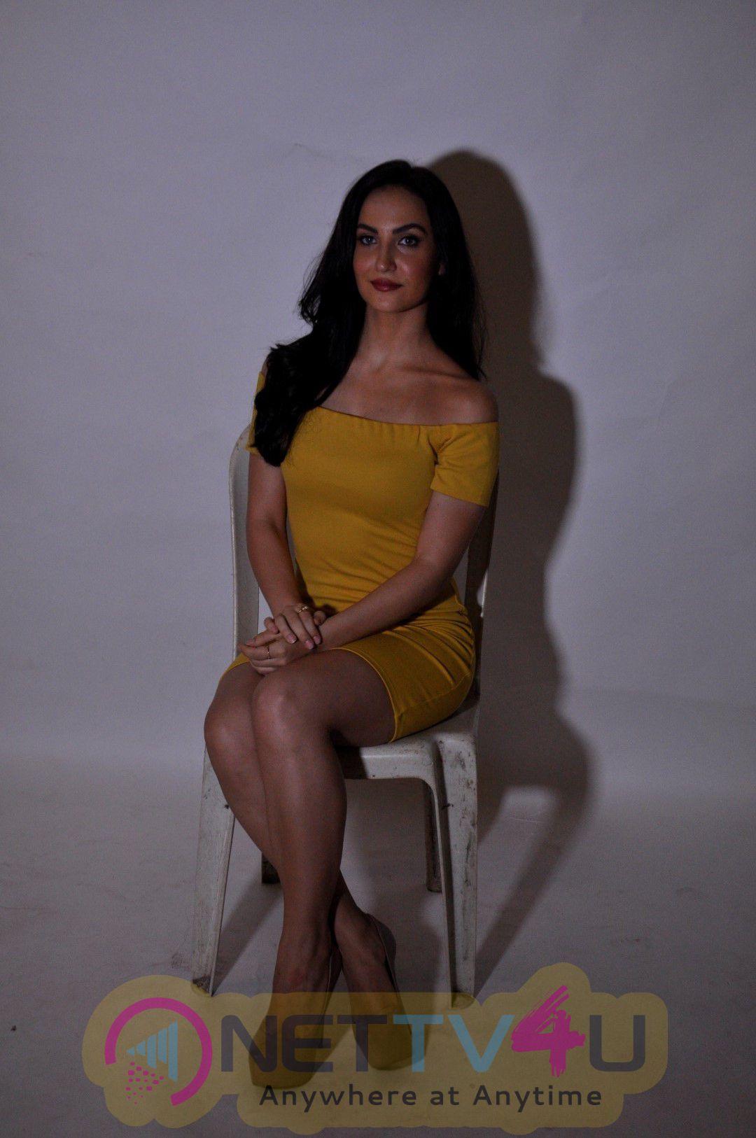 Photoshoot Of Elli Avram By Ace Photographer Faizi Ali Glamorous Photos Hindi Gallery