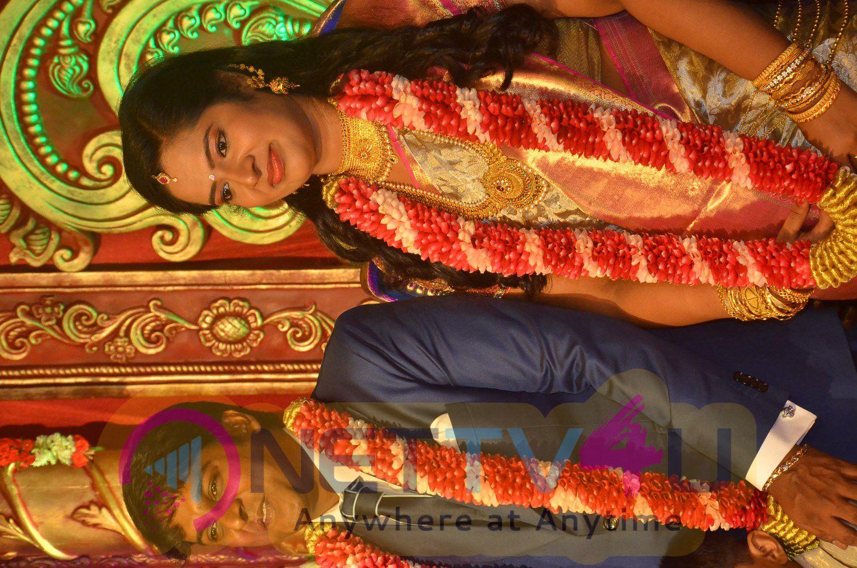 Producer Vinoth Kumar & Sindhu Wedding Reception Photos