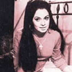 Rehana Sultan Hindi Actress