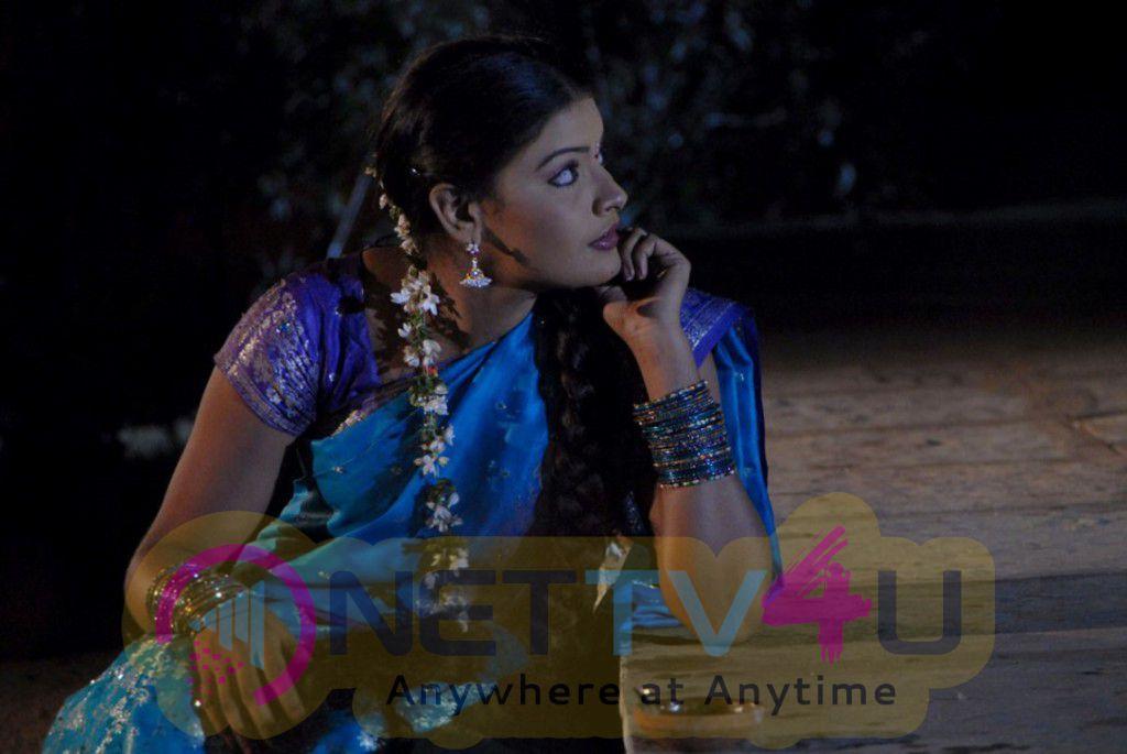 sa love pa tamil movie latest hot images nettv4ucom