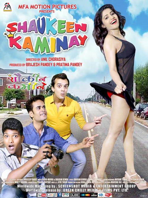 Shaukeen Kaminay Movie Review Hindi Movie Review