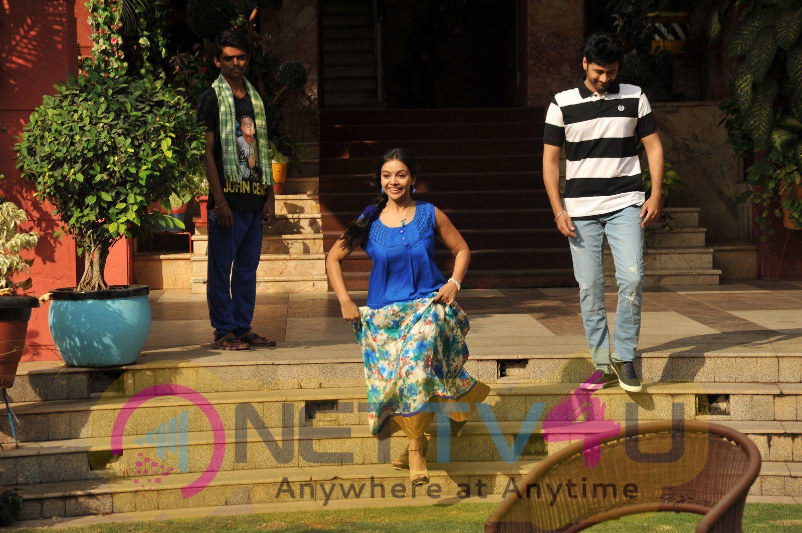 Shobhan Babu Movie Working Stills