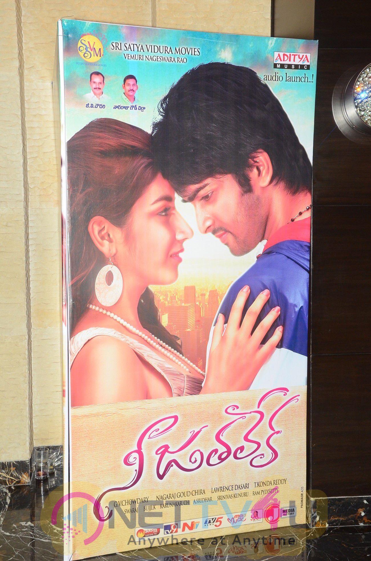 Telugu Movie Nee Jathaleka Audio Launch Charming Photos