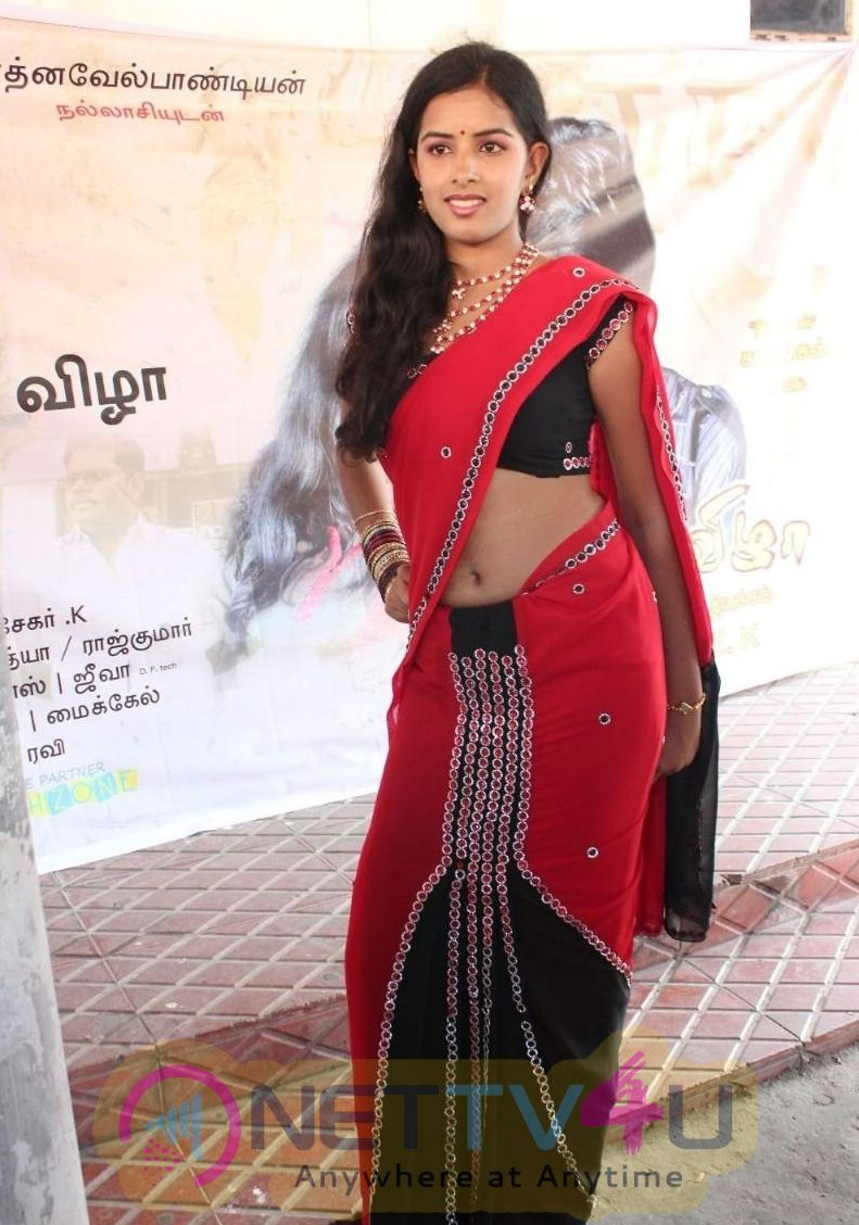 Tamil Actress Bhanusri Show In Saree Exclusive Stills