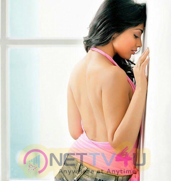 Tamil Actress Shriya Saran Hot Photo Shoot Stills