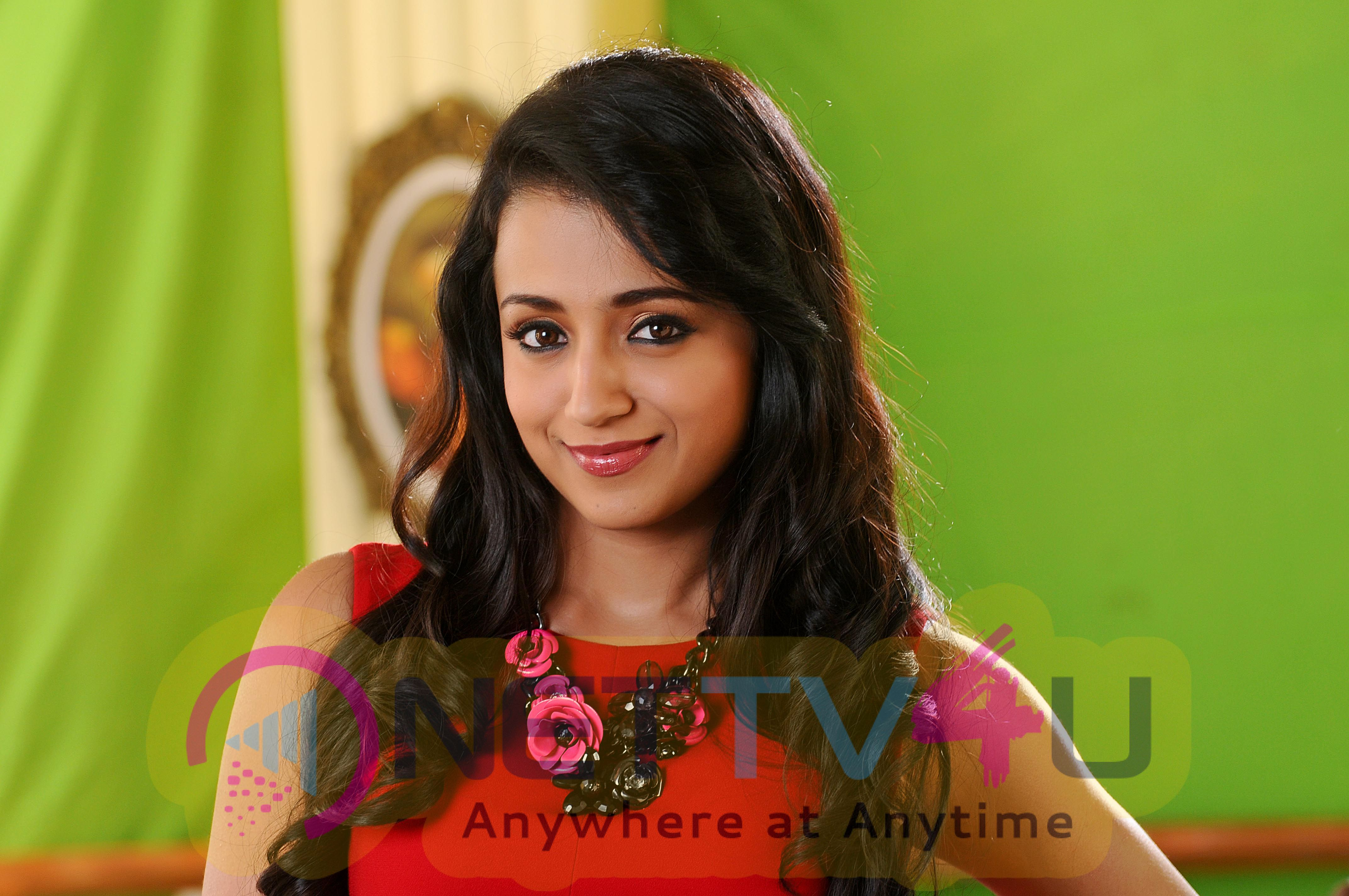 tamil actress trisha high quality photos stills 1