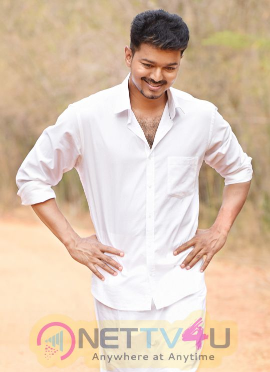 tamil film actor vijay glamour photos 1