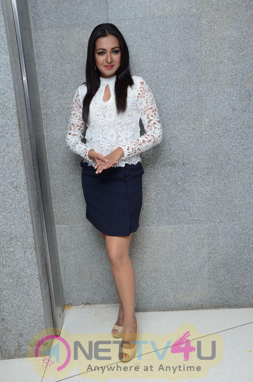 Telugu Actor Catherine Tresa  At Sarrainodu Movie Success Meet Photos