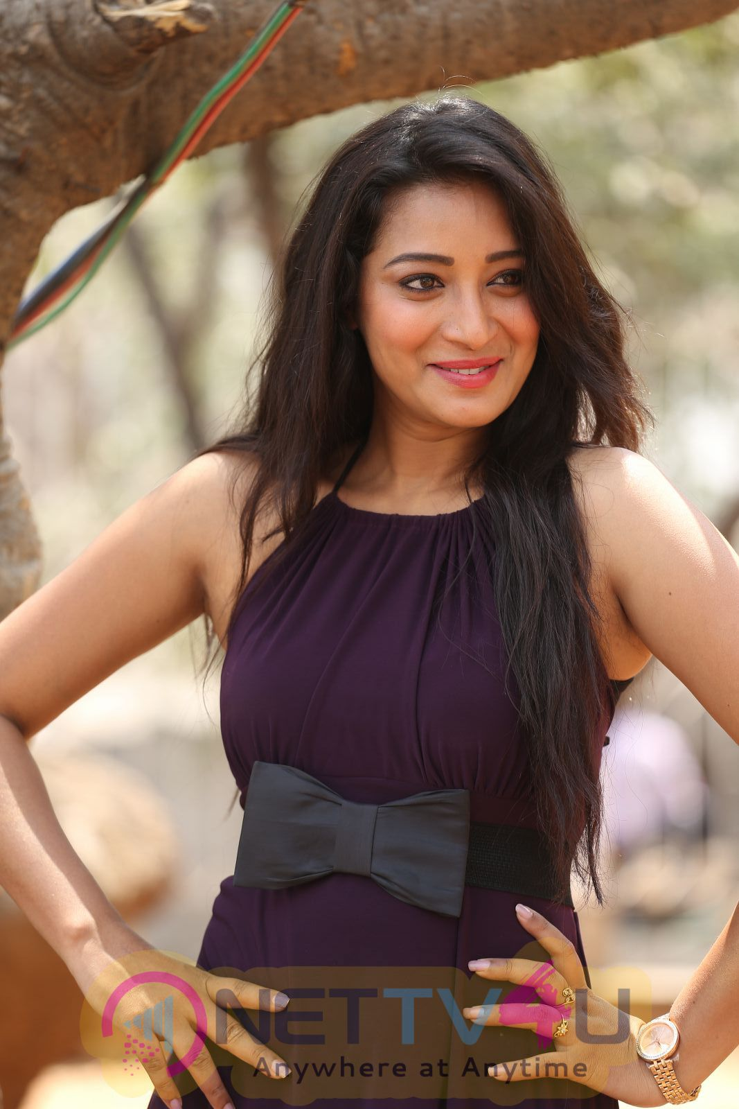 Telugu Actress Bhanu Sri Latest PhotoShoot Stills Telugu Gallery