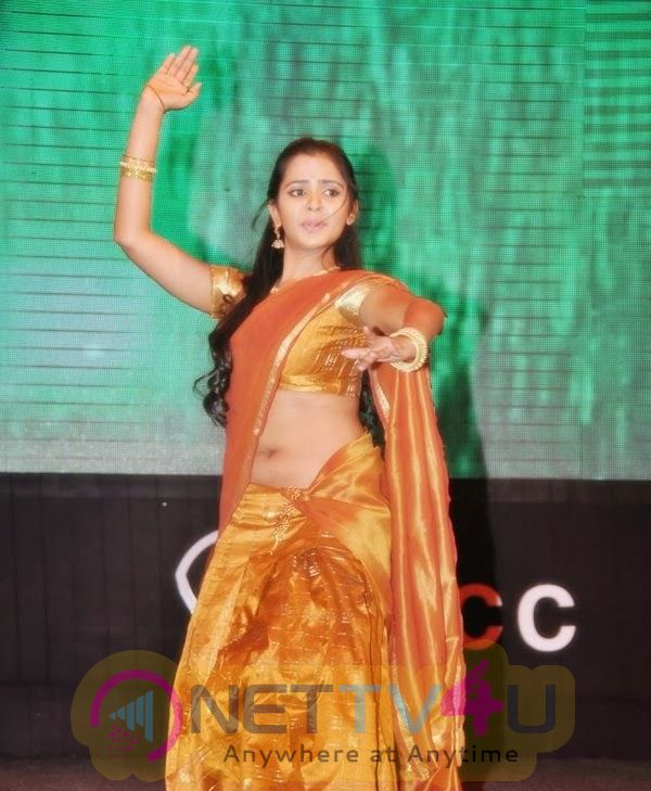 Telugu Actress Manasa In Colorful Saree Latest Photos Cute Stills
