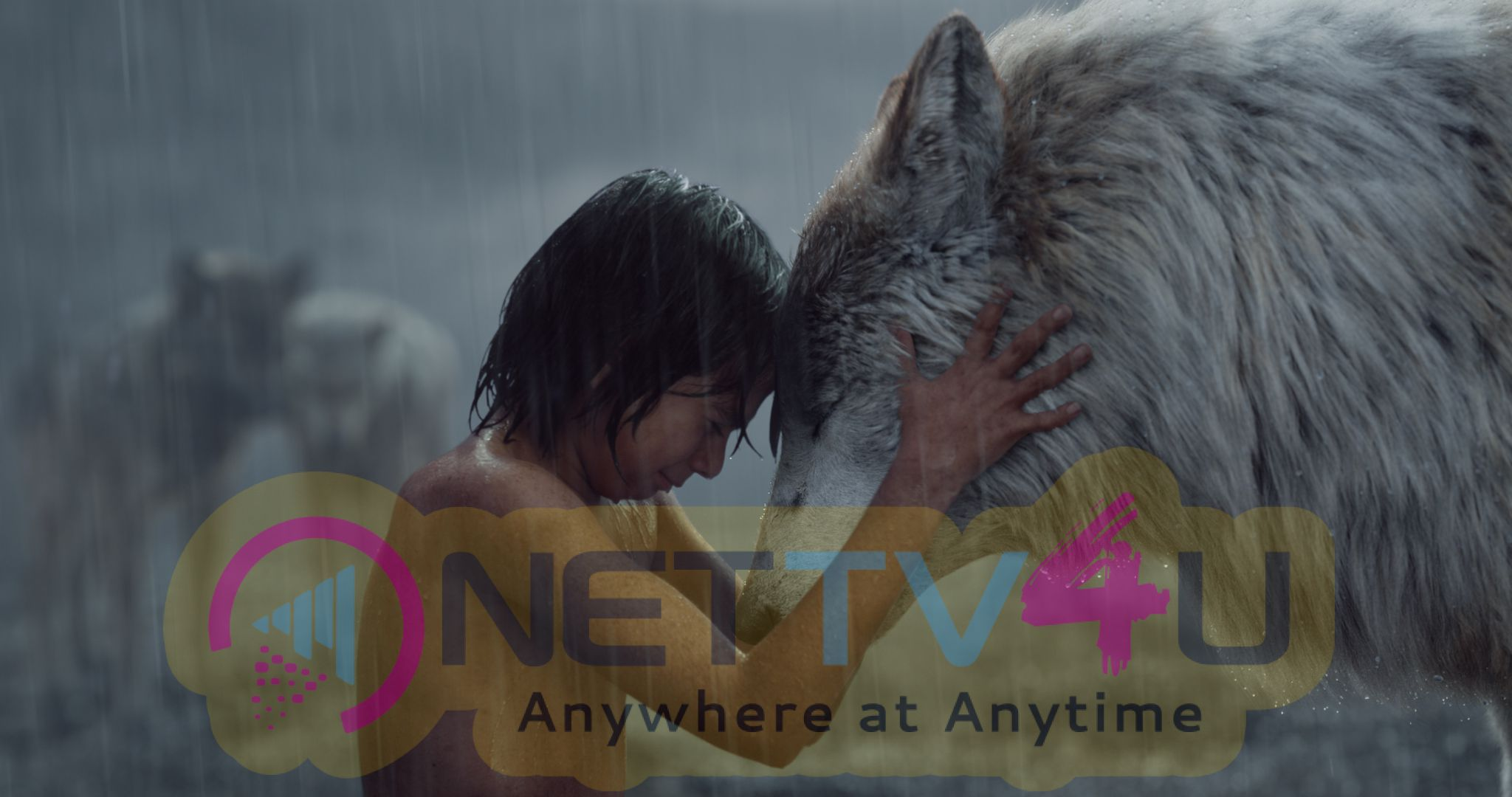 The Jungle Book Hollywood Movie Stills English Gallery