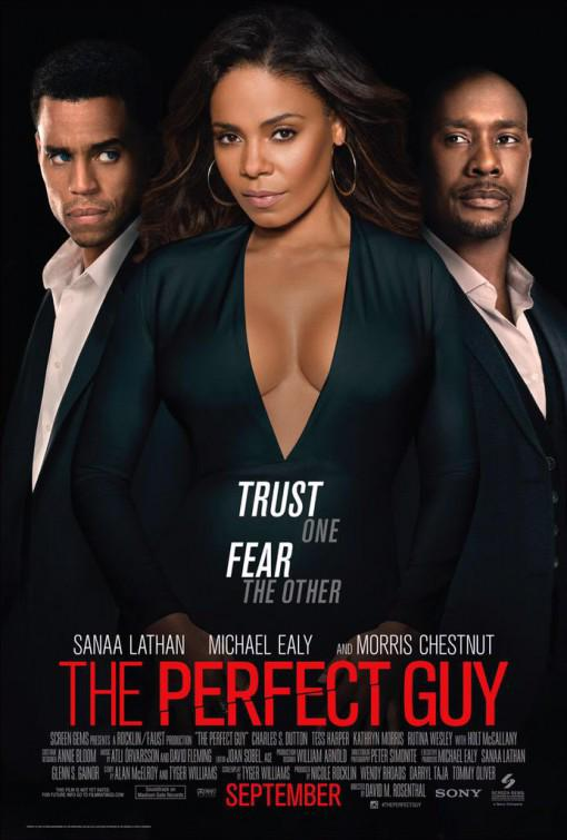The Perfect Guy Movie Review English