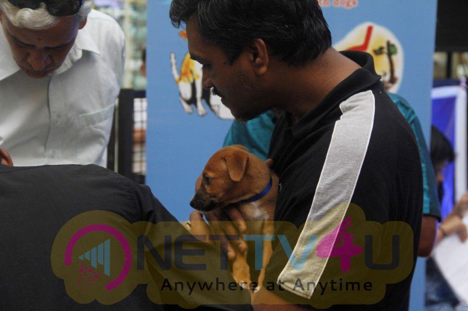 Varalaxmi Sarathkumar Initiates Adoptathon Excellent Photos Tamil Gallery