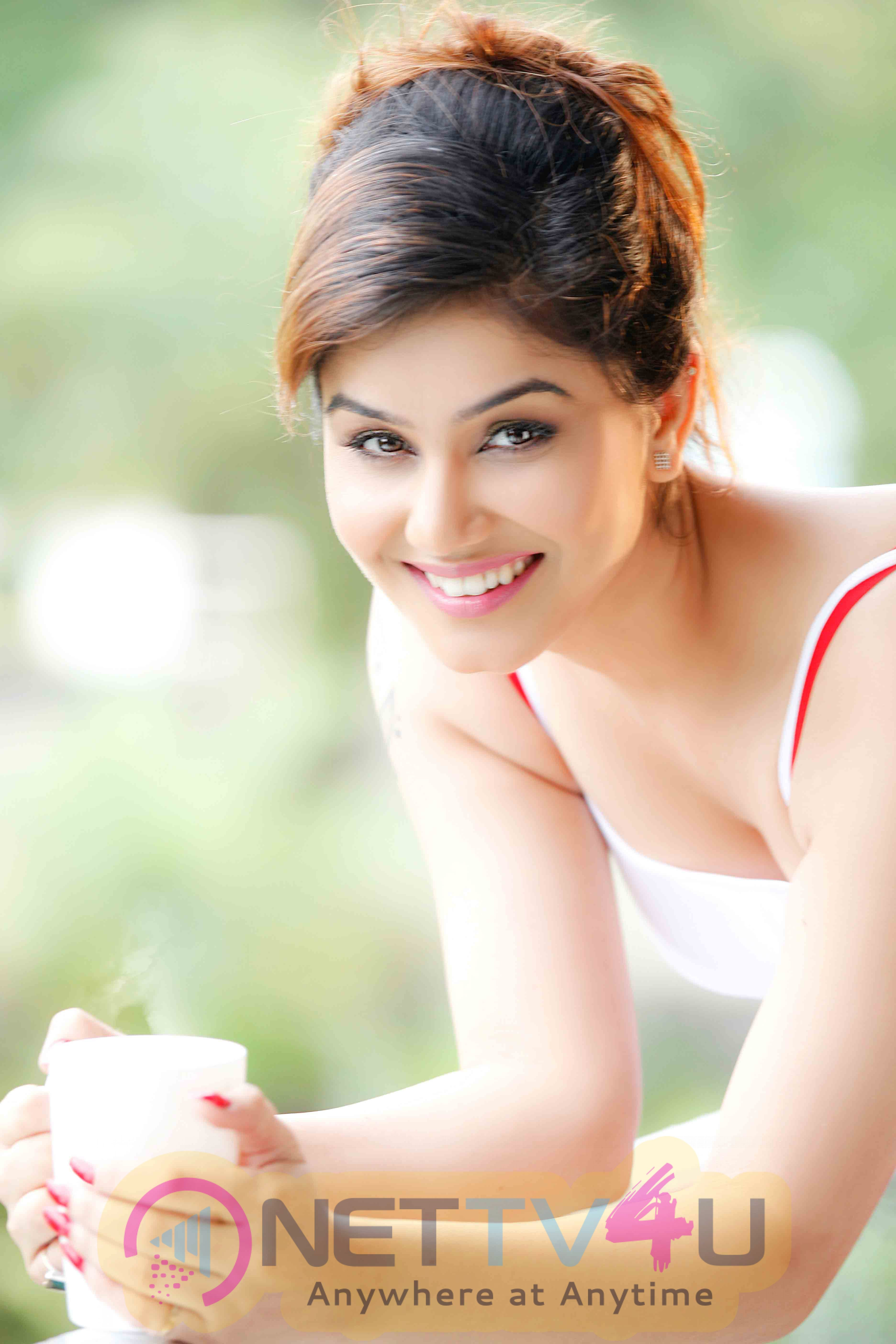 Working With Riteish Deshmukh, Vivek Oberoi Dream Comes True Says Actress Kangana Sharma Glamorous Stills